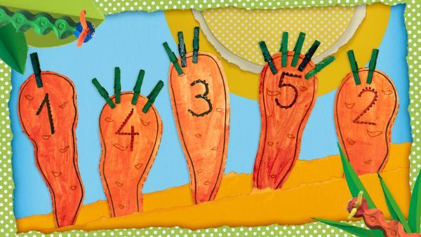 Mit Farbe angemalte Möhren mit Zahlen von 1 bis 5 drauf und zwei Raupenaus Eierkarton, die vom Rand kommen.  | Rechte: KiKA